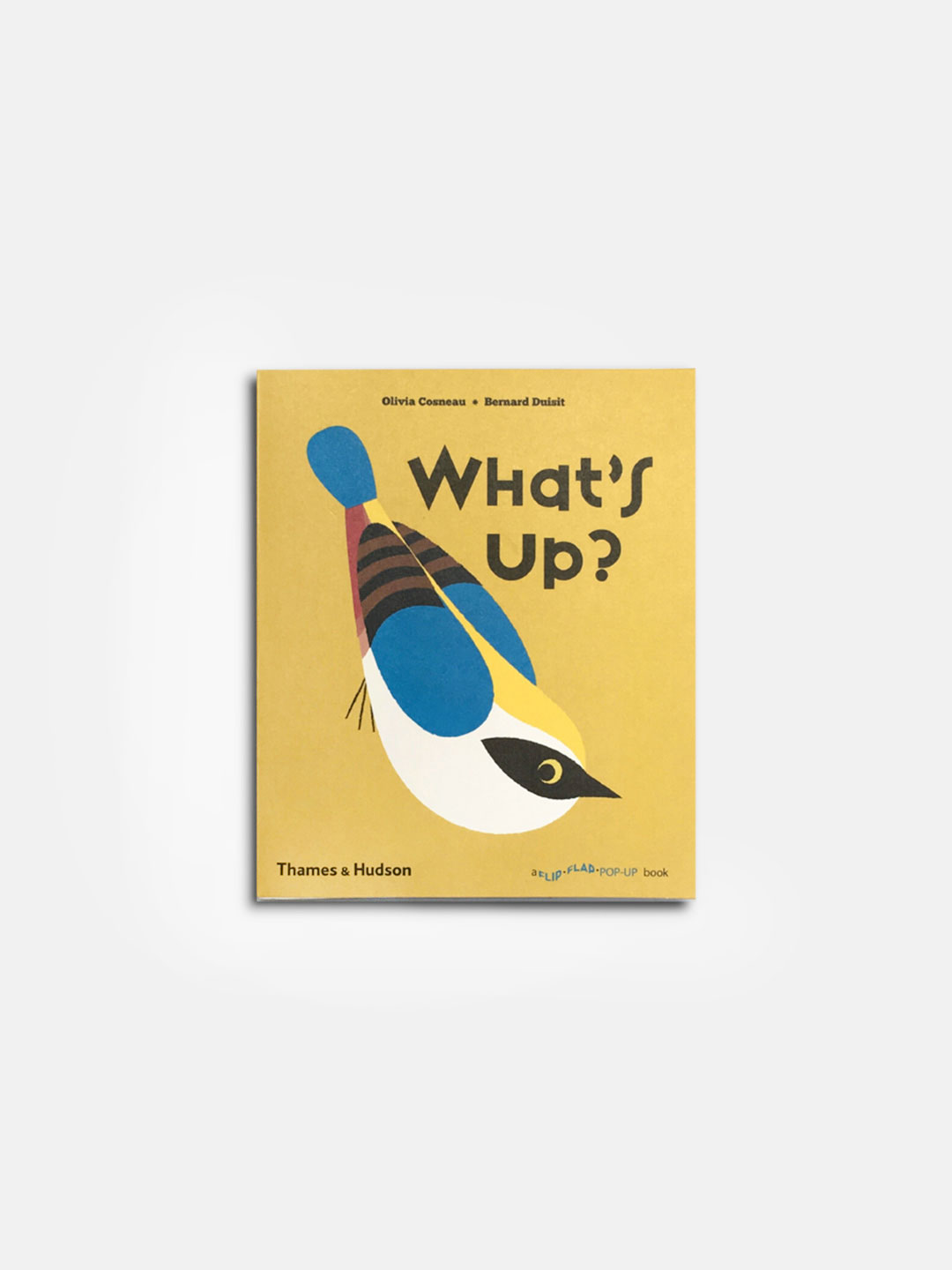 What's up? Flip Flap Book