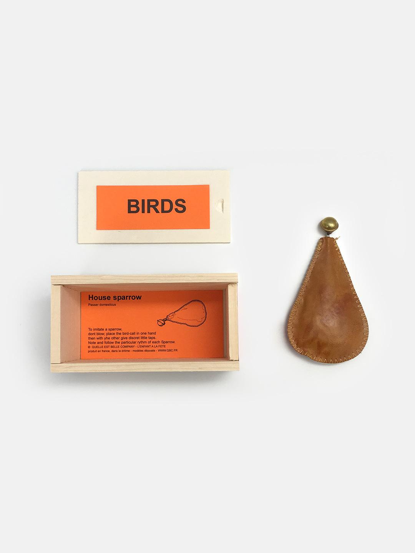 Bird Call – House Sparrow