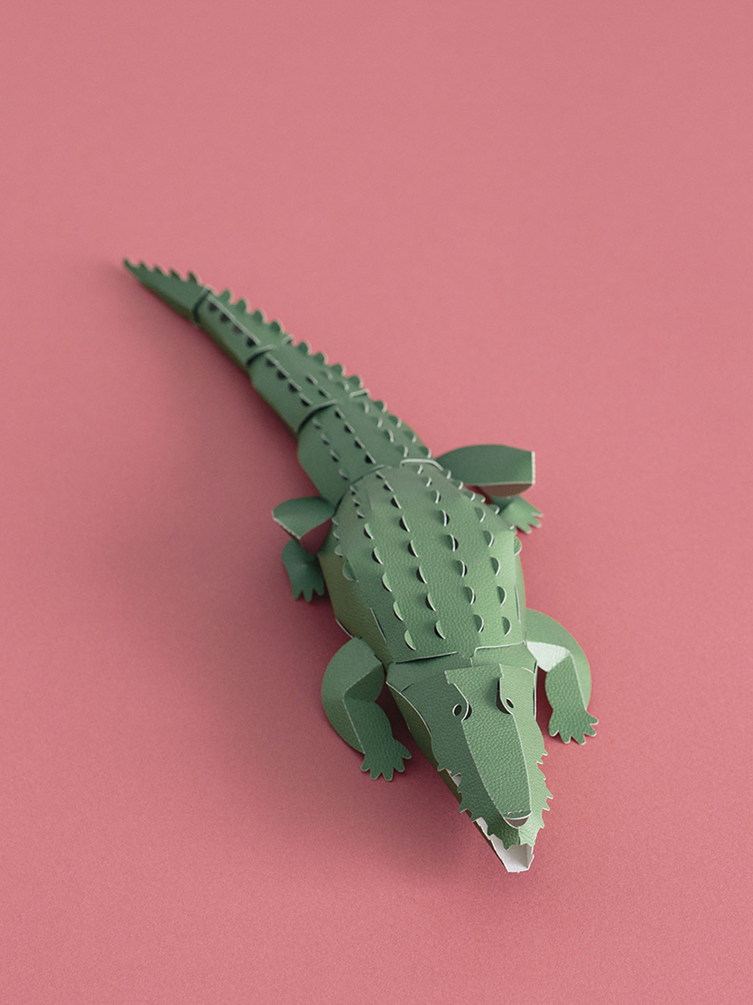 Top To Tail Paper Model Kit - Crocodile
