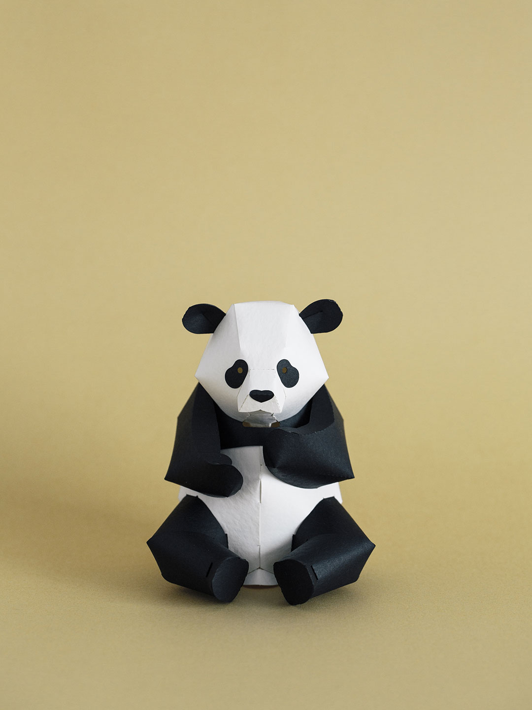 Top To Tail Paper Model Kit - Panda
