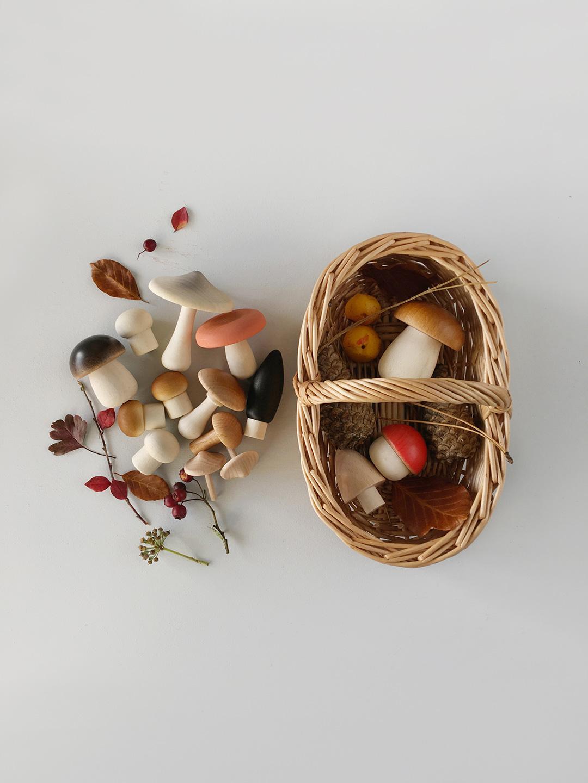 Forest Mushrooms Basket